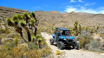 Off-Road Mojave Desert Adventure by Zero 1 Desert Adventures