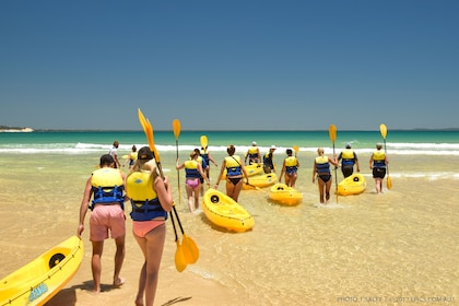 Group getting ready to go on the Dolphin View Kayaking adventure in Australia
