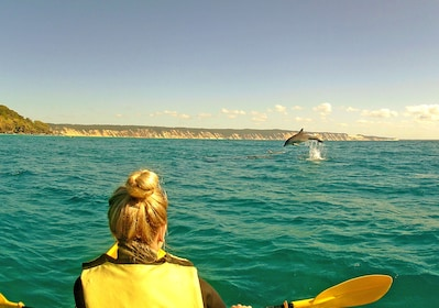Woman kayaking while seeing a dolphin jump out of the water