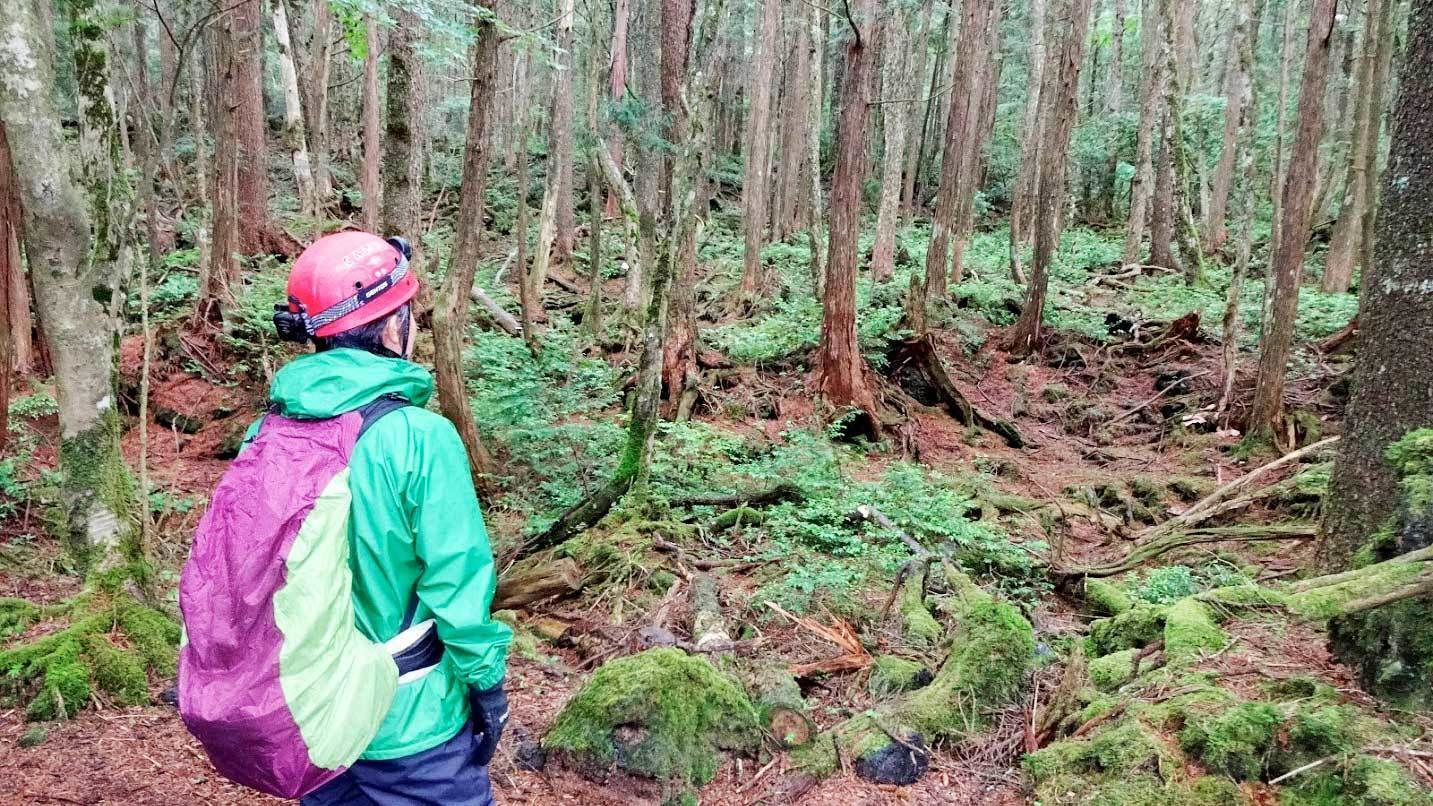 Woman on the Aokigahara Forest and Ice Cave Tour in Japan