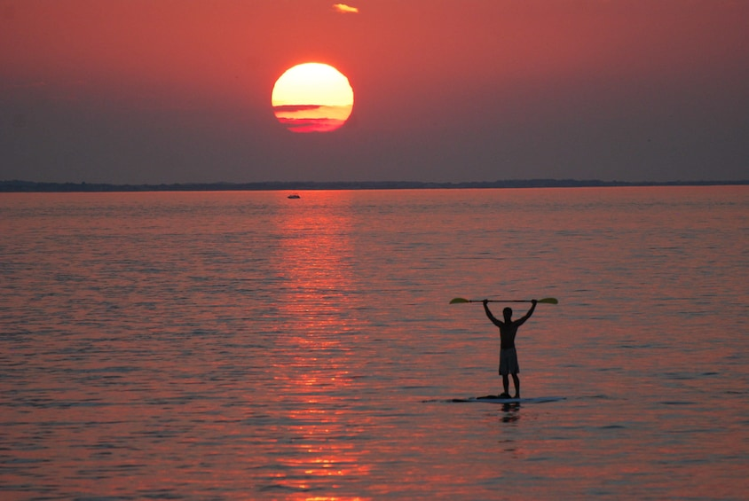 Show item 7 of 7. Sunset Dolphin Stand-Up Paddleboard Excursion