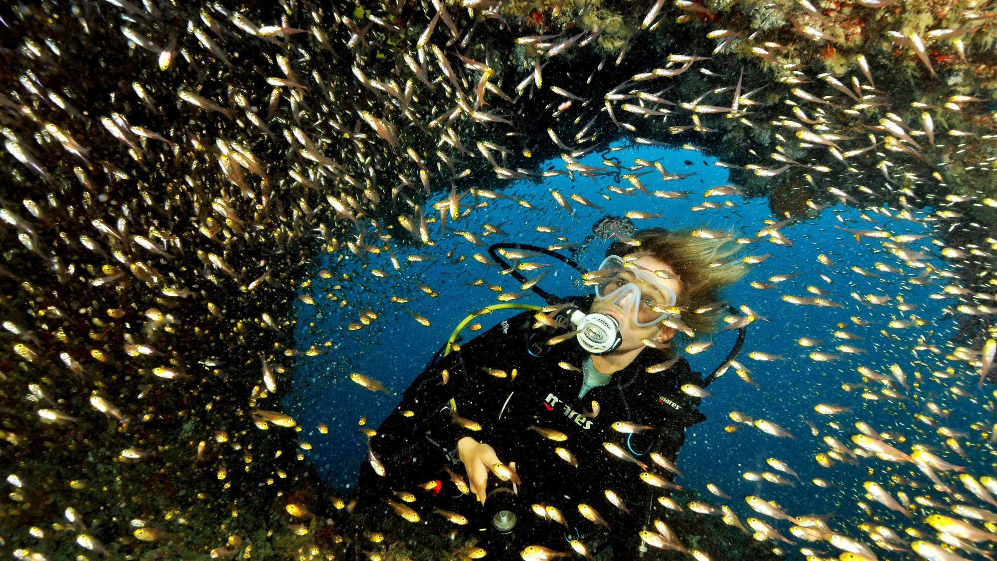 Scuba diver surrounded by a school of small fish in Lanzarote
