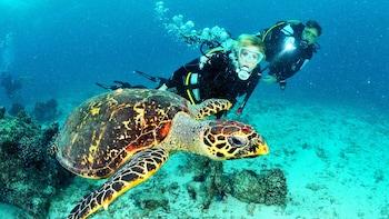 Zweitägiger Gerätetauchkurs auf Lanzarote mit Tauchgang im offenen Gewässer