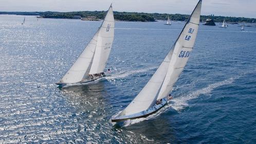 Racing sailboats in Newport