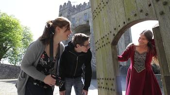 Bunratty Castle & Folk Park Admission