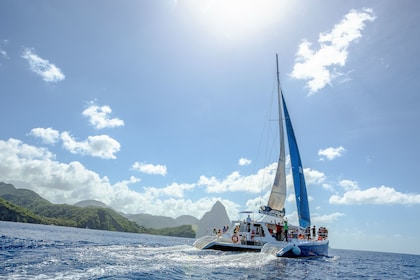 Wet & Wild Catamaran, Buggy & Snorkeling Adventure with Lunch