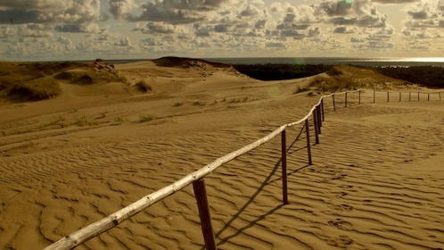 Sand dunes at the Curonian Spit in Vilnius
