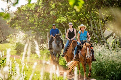 Group on Horseback at Gunstock Ranch