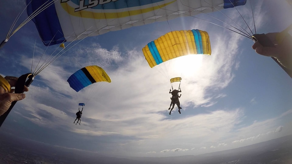Show item 5 of 7. View of skydivers with parachutes deployed over Gold Coast