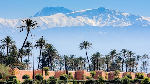 Beautiful views on the Marrakech Sightseeing tour