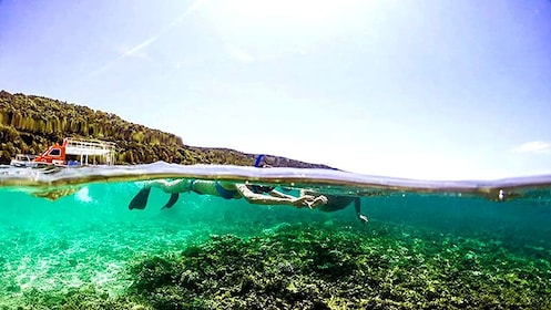 Snorkelers swimming at the surface of the water in Kota Kinabalu