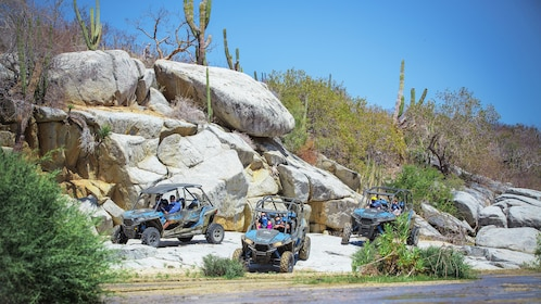 Off-road buggies parked near rivers edge in Los Cabos