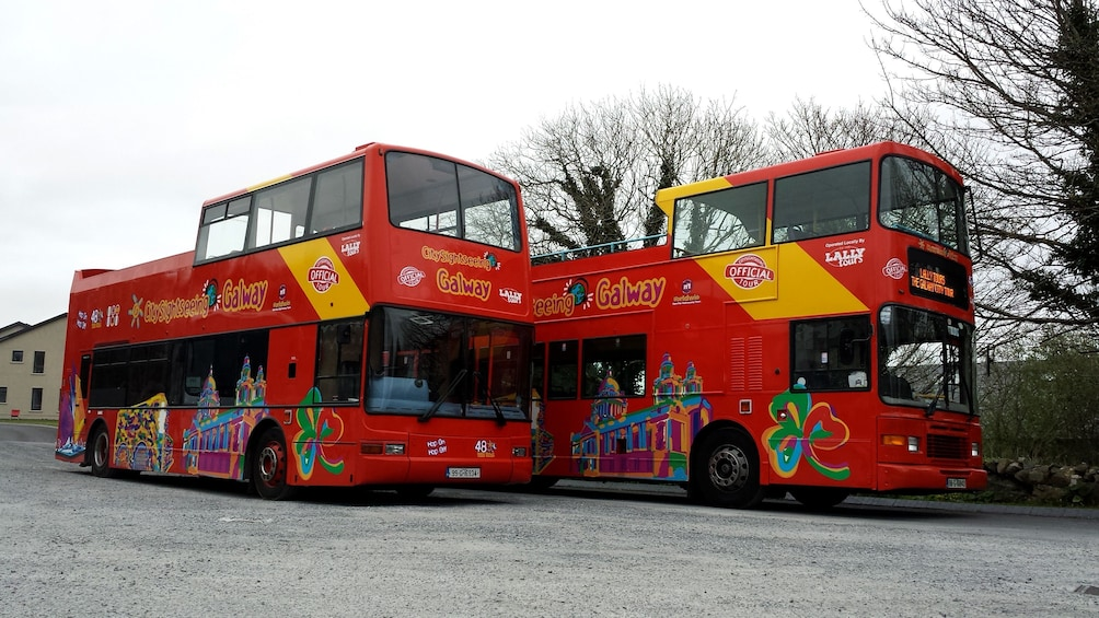 Show item 1 of 10. Hop-on hop-off buses in Galway