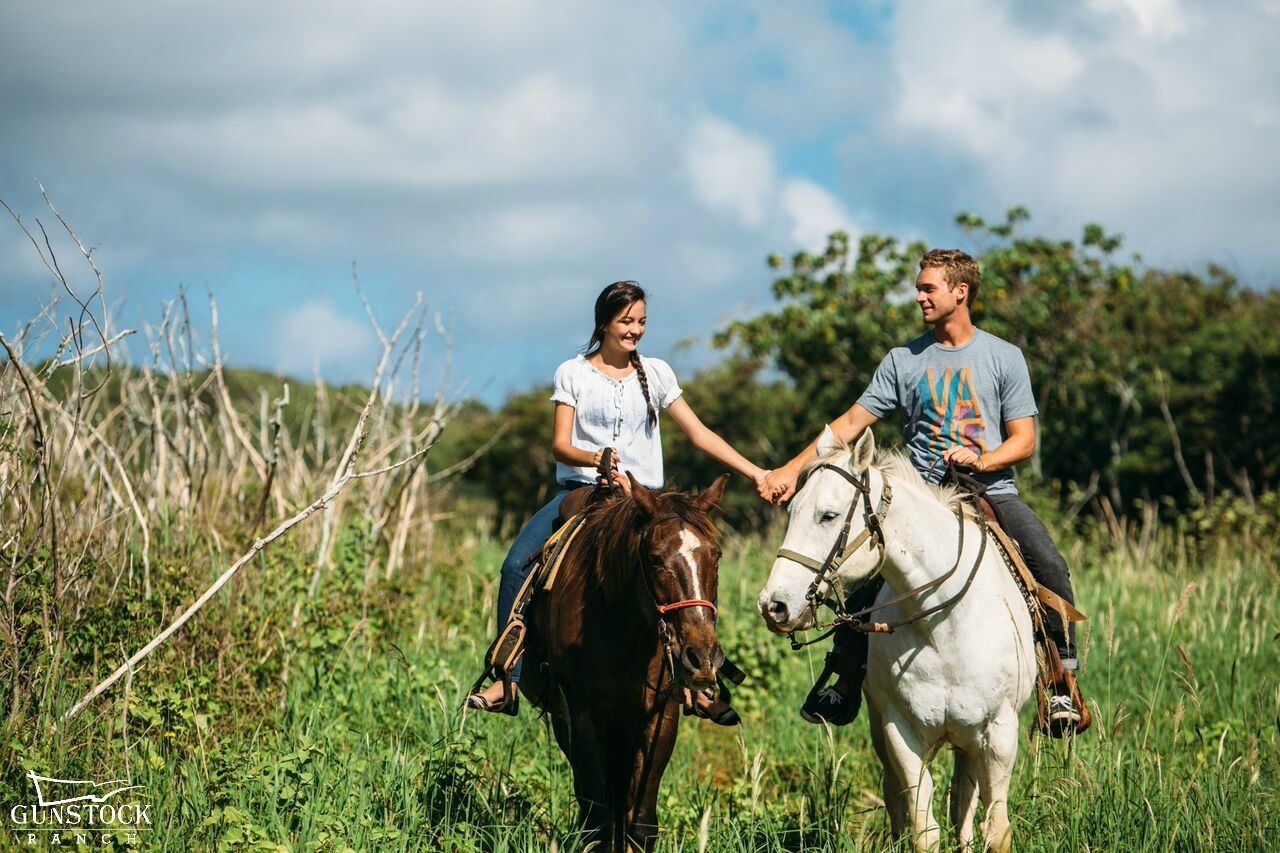 A couple holding hands on horseback on a trail