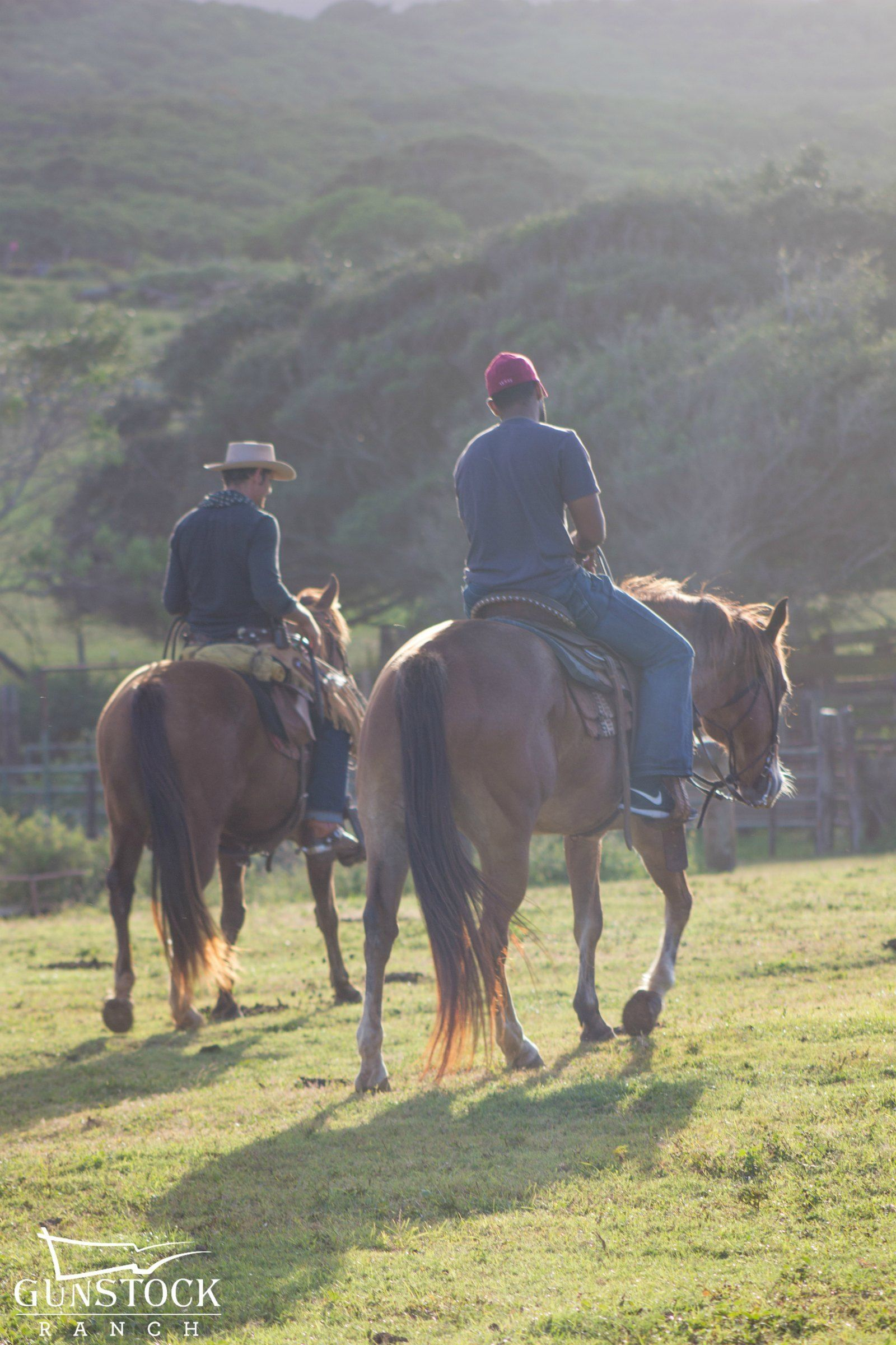 Couple riding horses in Hawaii