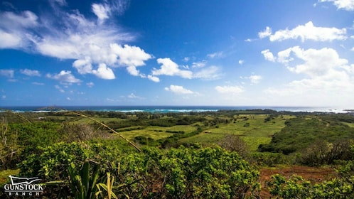 Panoramic view of fields in Hawaii