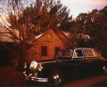 1962 Daimler at a rustic winery in Australia