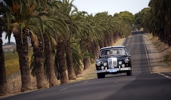 Barossa Valley Full Day Private Wine Tour in a 1962 Daimler