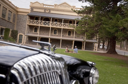 Two people have a picnic on a blanket at a winery in Barossa Valley with a 1962 Daimler in foreground