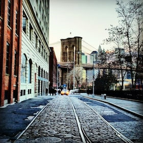 View down cobblestone street in Brooklyn