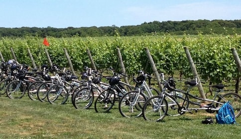 Weekend Self Guided Tandem Bicycle Tour in New York
