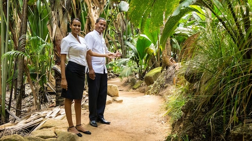 Tour guides leading the way down trail in Vallee de Mai