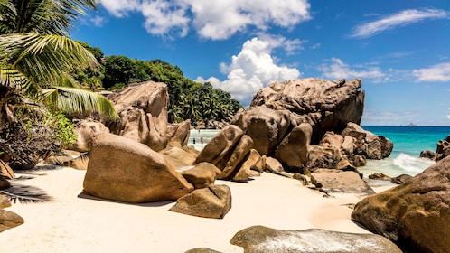 Sandy beach with large rocks in La Digue
