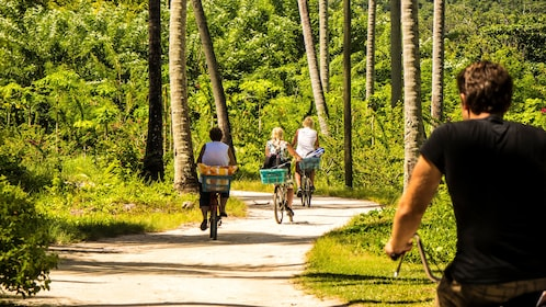Group bicycling down pathway in La Digue