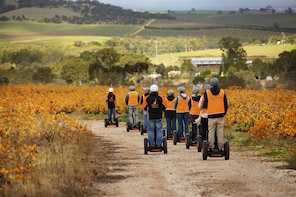 Seppeltsfield Winery Segway Tour