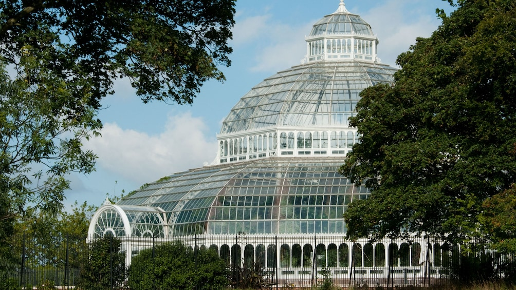 Show item 5 of 5. Large greenhouse in Liverpool