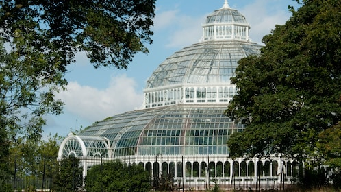 Large greenhouse in Liverpool