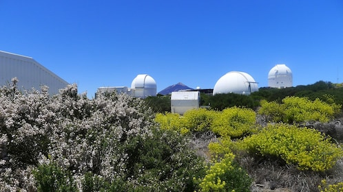 View of the Teide Observatory