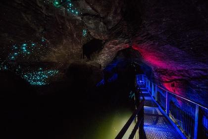 Ruakuri Cave in New Zealand