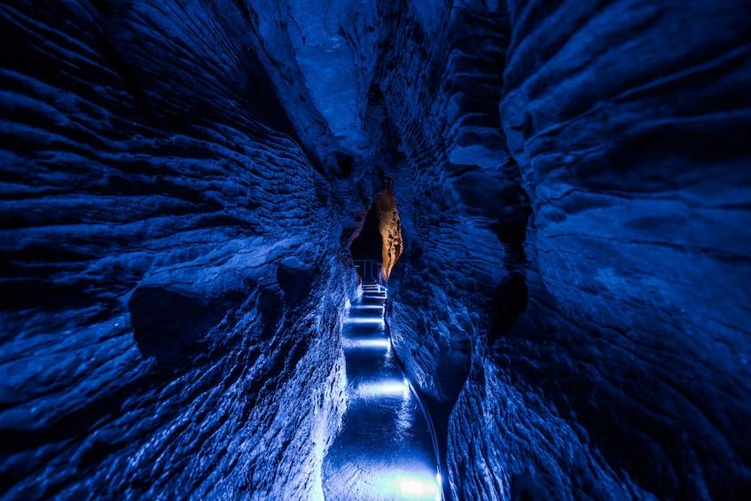 Show item 2 of 8. Ruakuri Cave in New Zealand