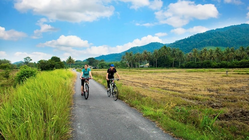 Stunning view of Penang's Countryside via bicycle