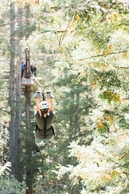 Woman ziplining to next platform in Sonoma County