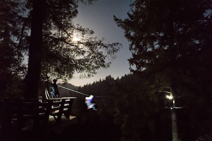 Zip the Night Away in the Redwoods of Sonoma County - Sunset