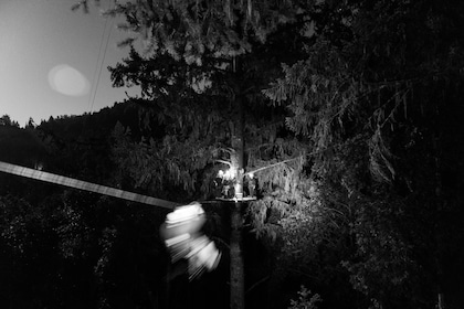 View of the Ziplining adventure at night in the Redwoods of Sonoma County
