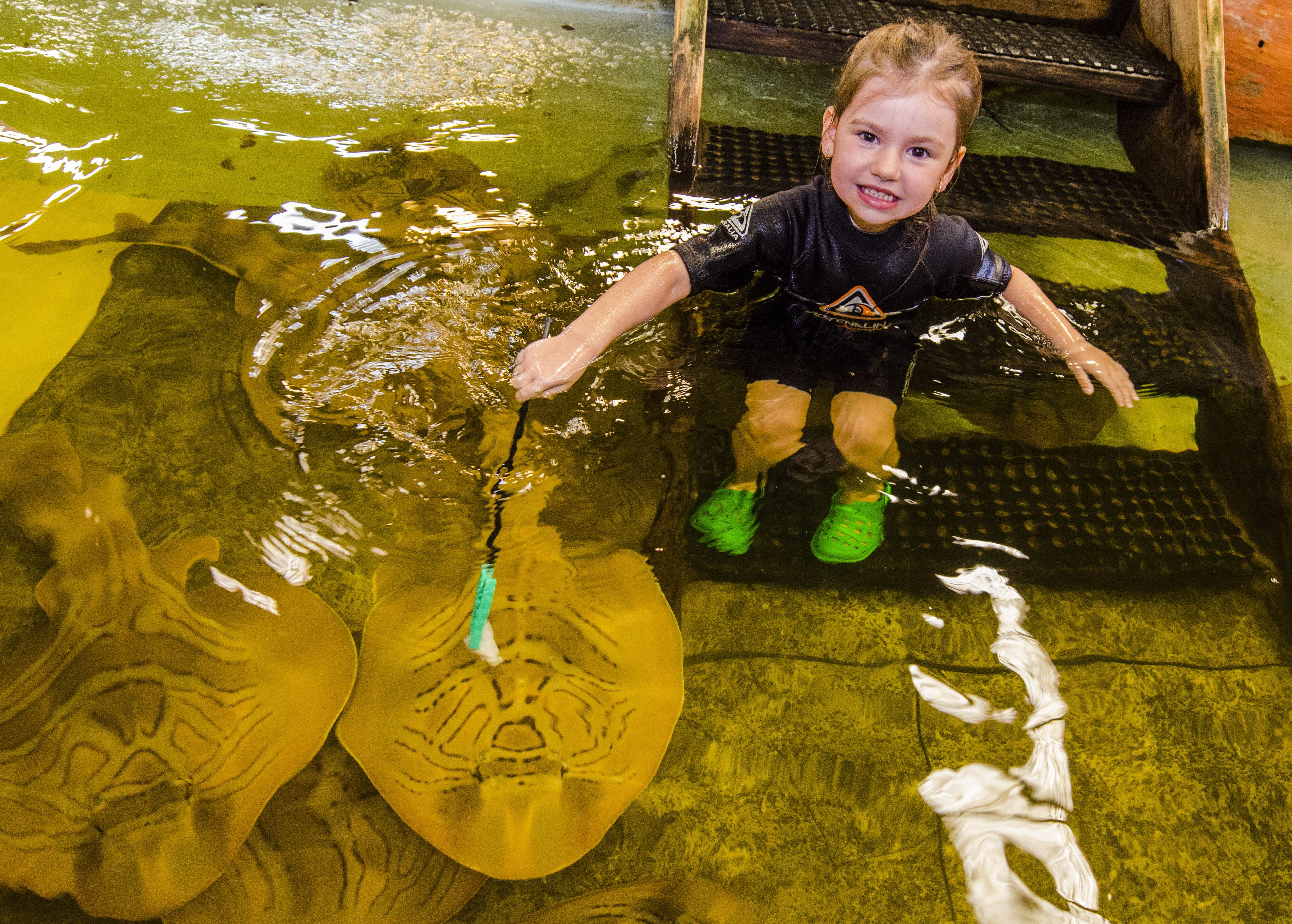 Little girl in a tank with stingrays at Irukandji Aquarium in New South Wales