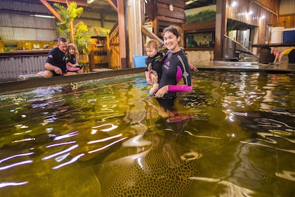 Woman and baby in a tank of stingrays at Irukandji Aquarium in New South Wales
