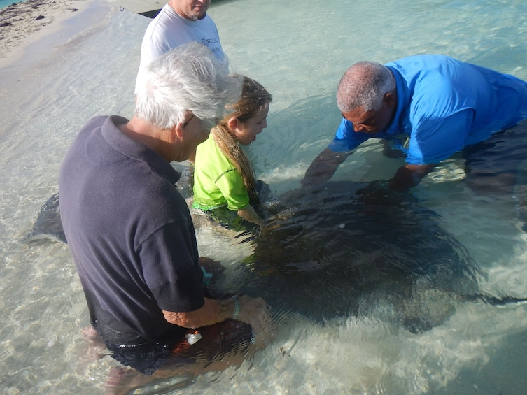 Show item 3 of 4. Stingray encounter in the Grand Bahamas, Out Islands