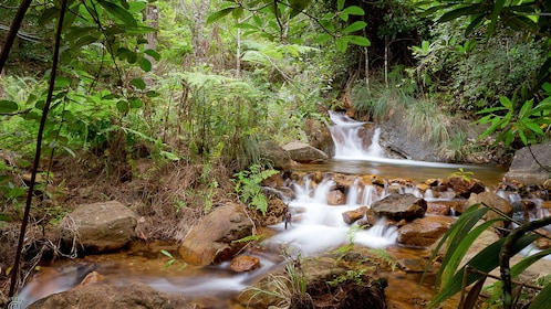 Waterfall in the forest in Noumea