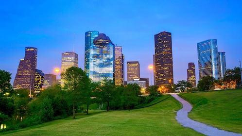 View of Houston at night from park