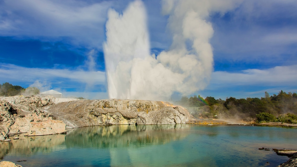Show item 4 of 5. Geyser at a New Zealand geothermal pool