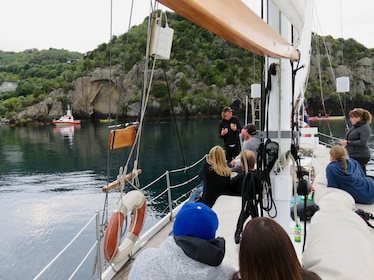 Sail Barbary to the Maori Rock Carvings