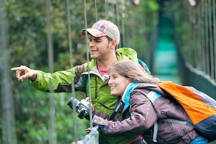 Two people on a bridge in a jungle canopy
