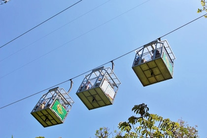 Three gondola carts on a wire above a jungle canopy