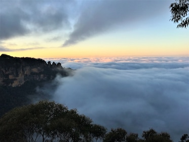 Mist rolling in through the Blue Mountains in Australia