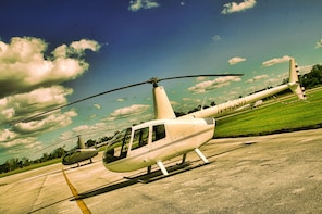 Helicopter Tour of Theme Parks - 20 Minutes