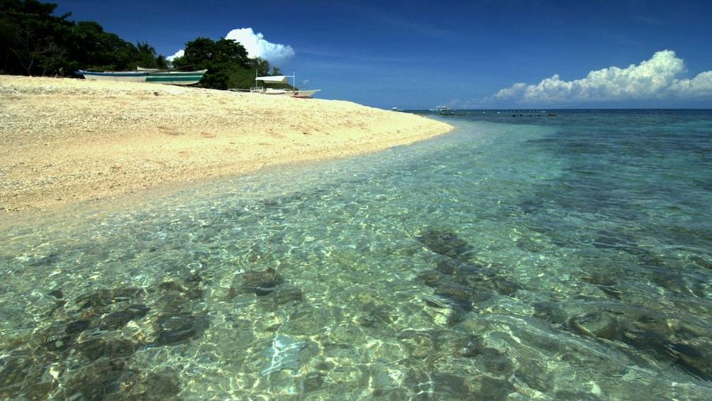 Show item 1 of 5. Beach of Balicasag island